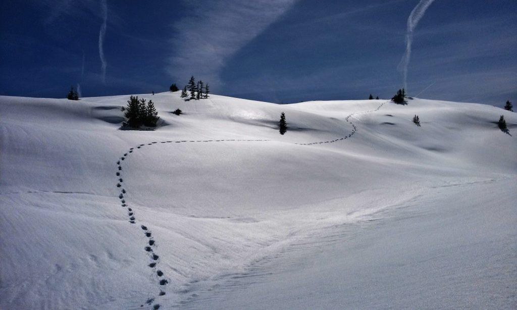 Jalanjäljet lumella auringonpaisteessa.
